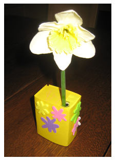Daffodil in box
