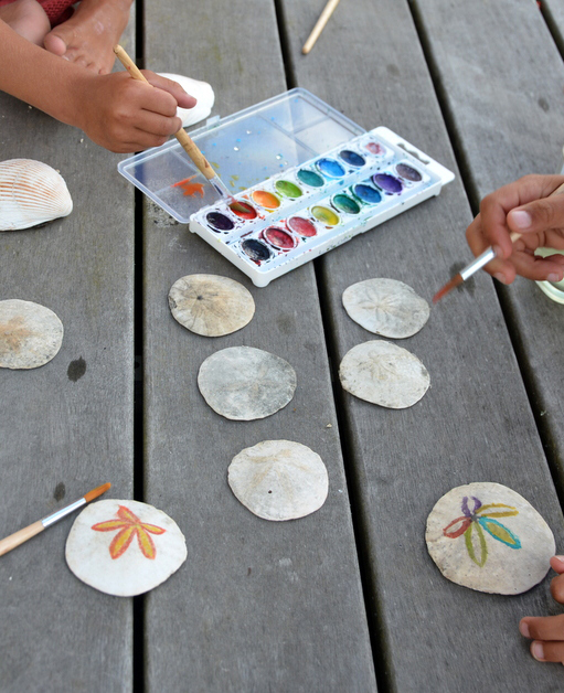 watercolour paints on sand dollars