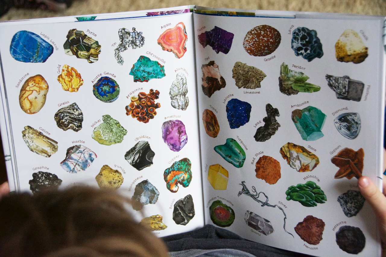 A Rock is Lively book