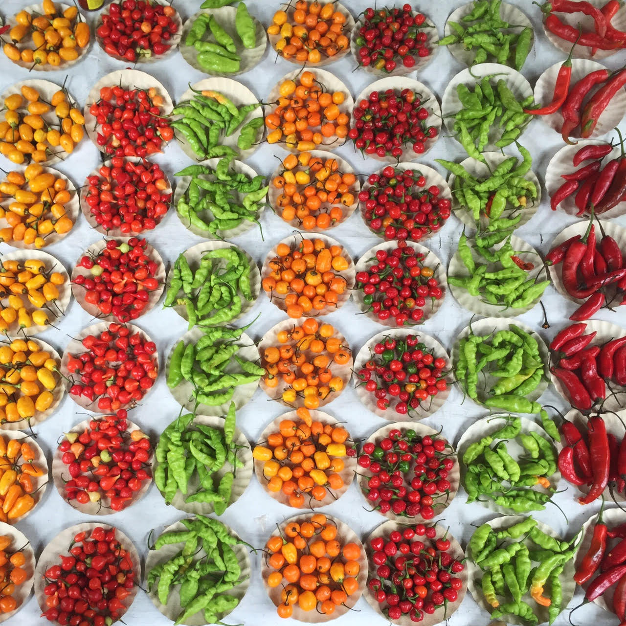 chilli peppers at market