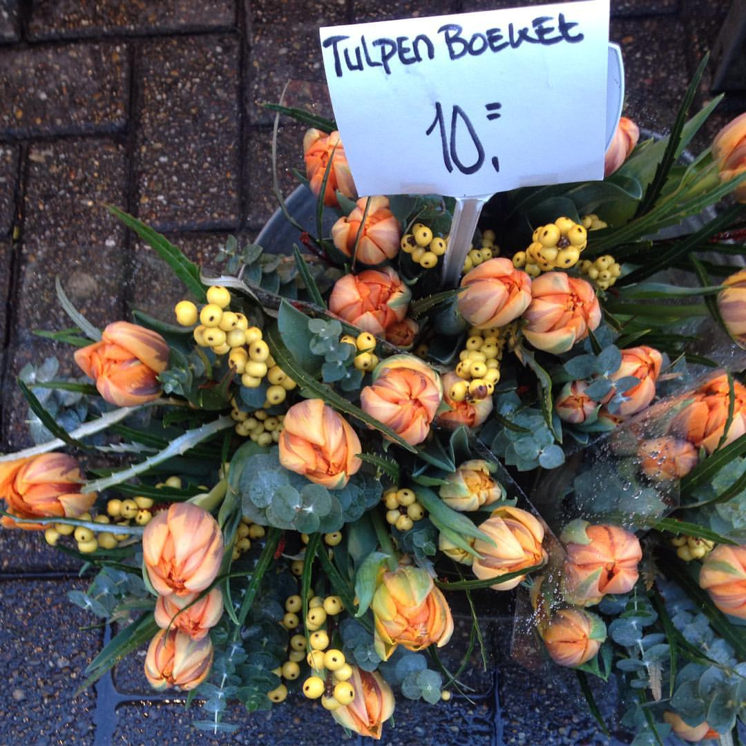 tulips_in_Amsterdam[1]