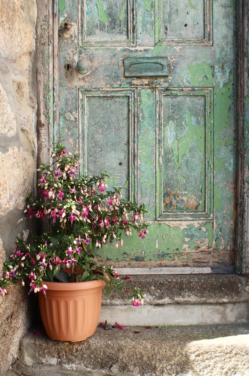 Green distressed door St Ives
