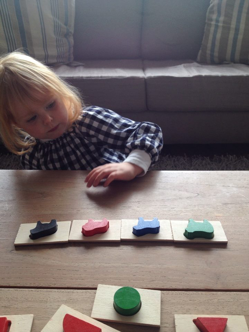 sorting-animals---find-and-feel-game