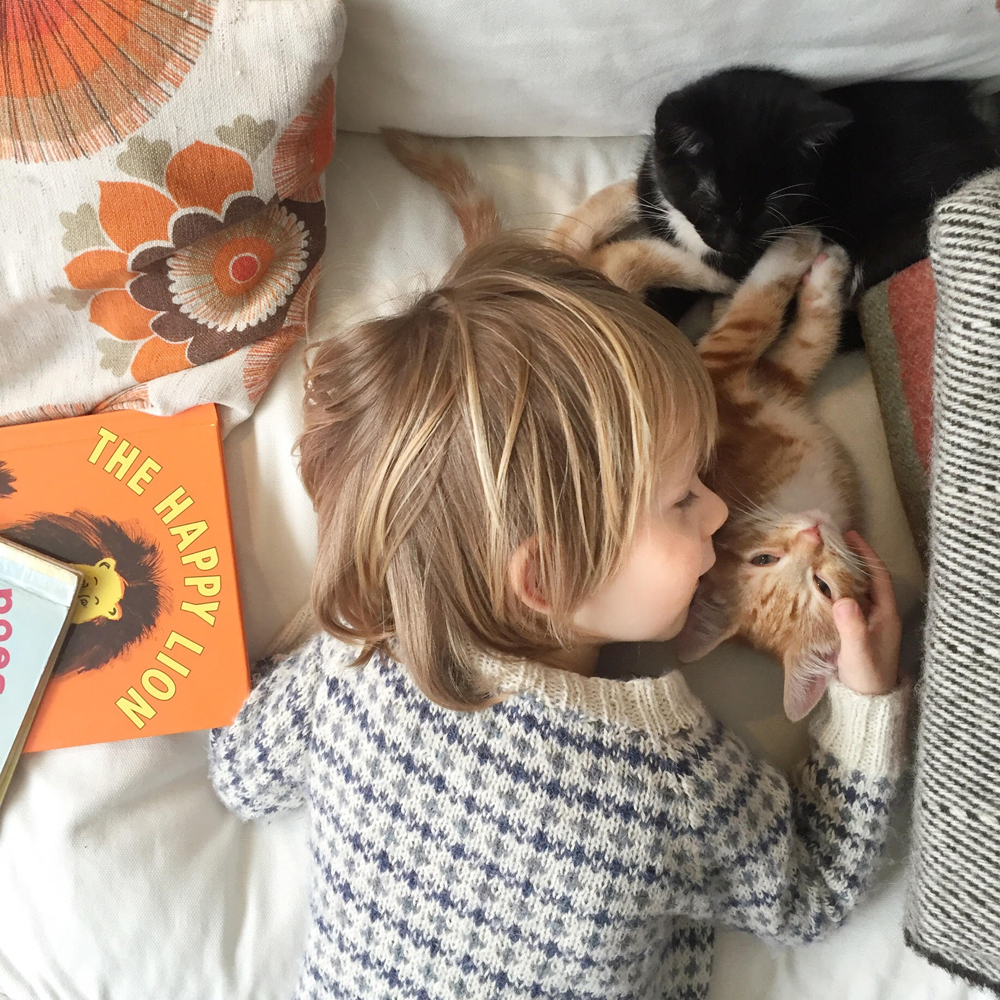 growing up with pets, kittens