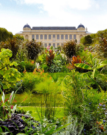 Le jardin des plantes paris babyccino kids daily tips for Jardins a visiter a paris