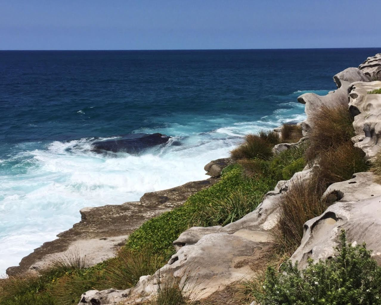 bondi-to-bronte-coastal-walk