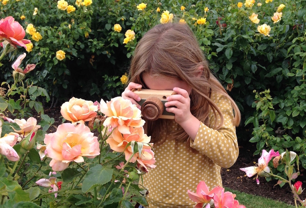 Sophie photographing the roses