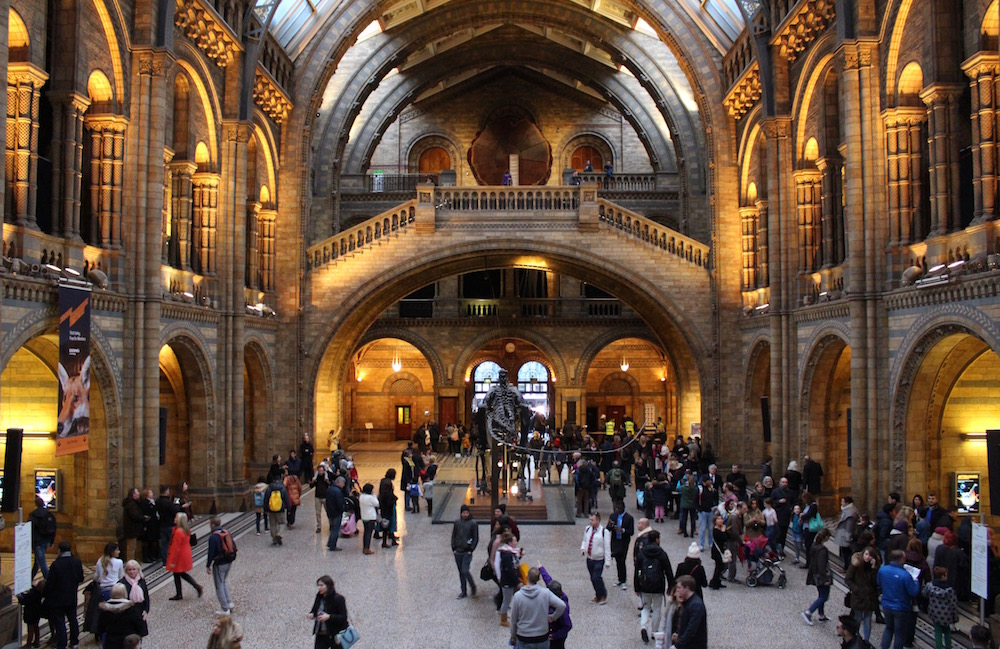 natural-history-museum-main-hall