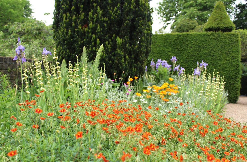 Beautiful flower borders Fenton House