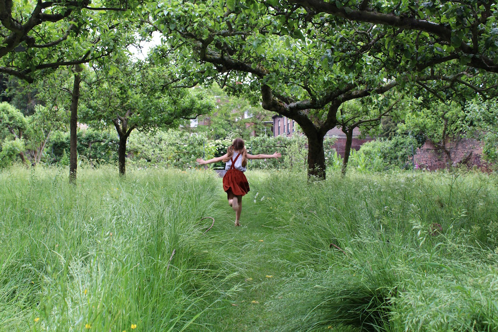Running through Fenton House orchard