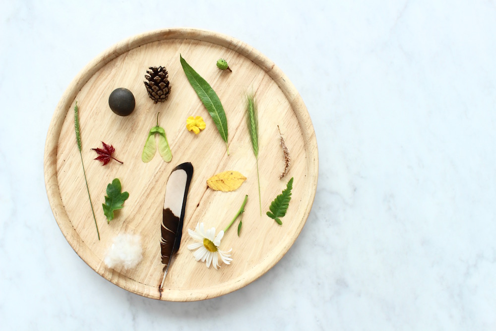 Wooden tray of collected nature hunt treasures