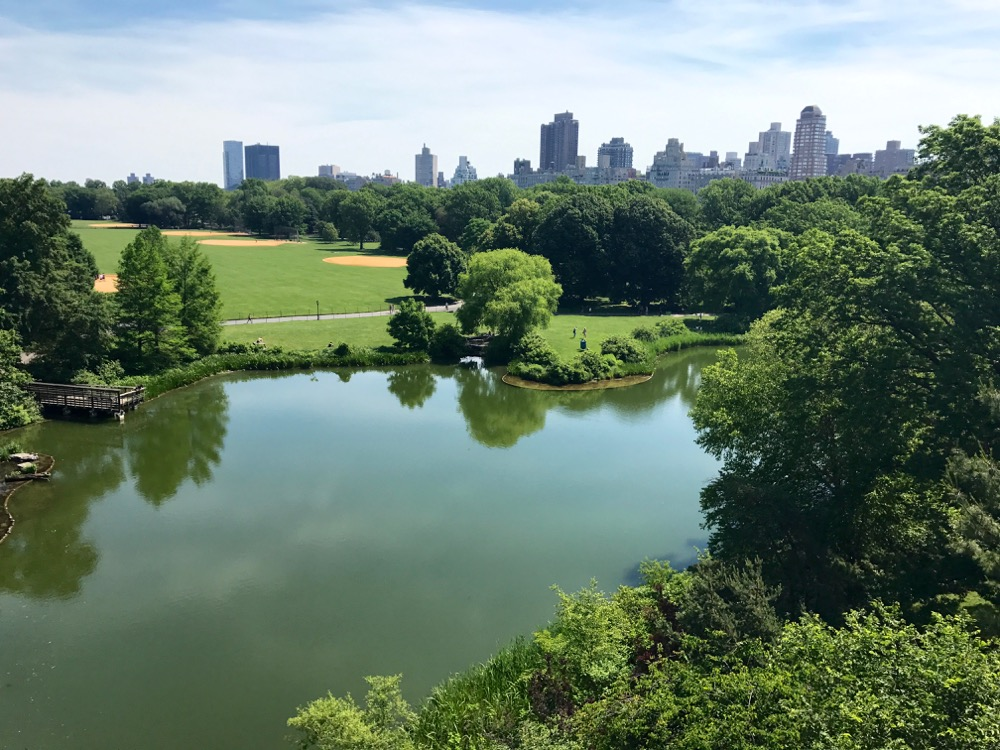 Central Park vista from Belvedere Castle