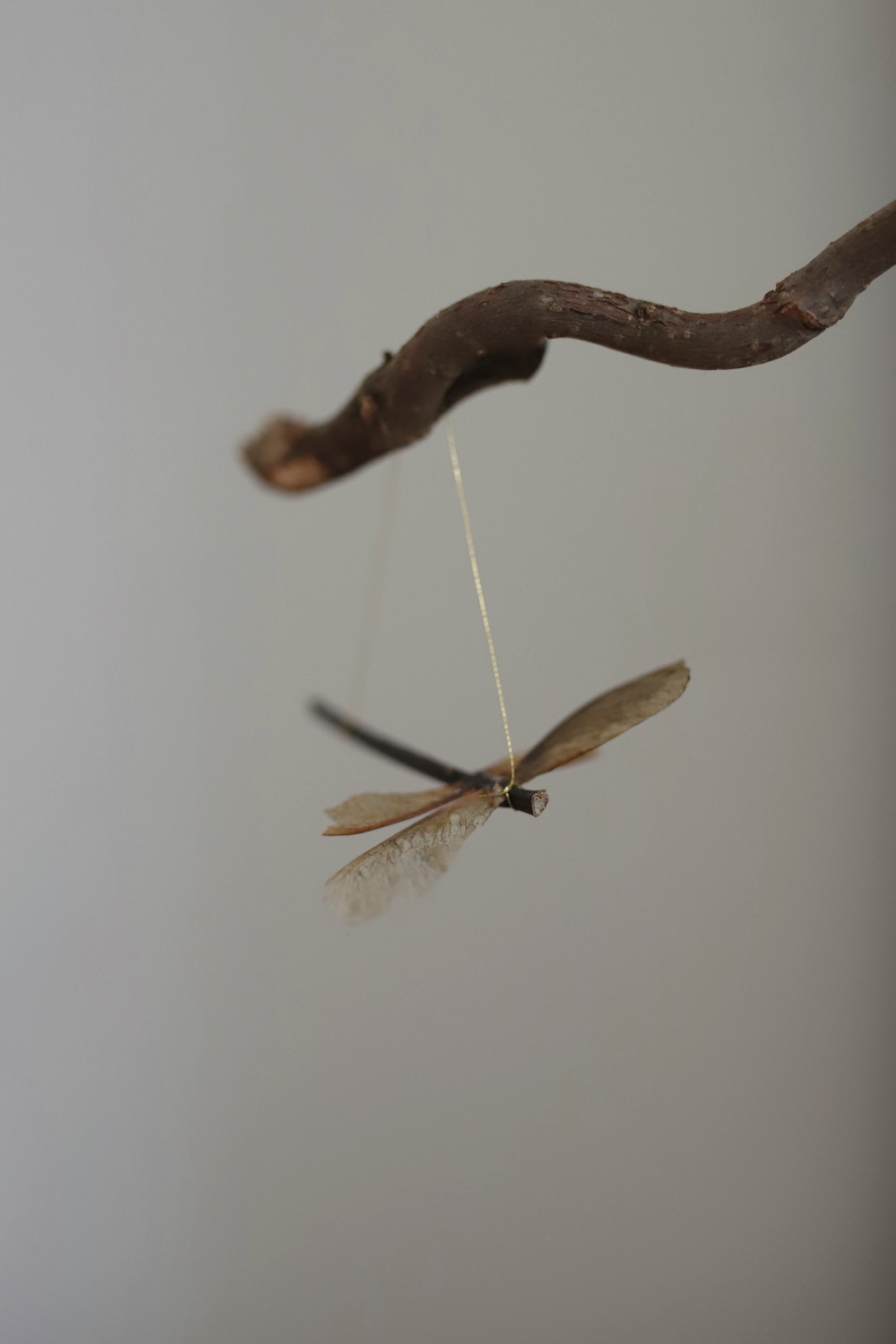 Maple seedpods dragonfly ornaments