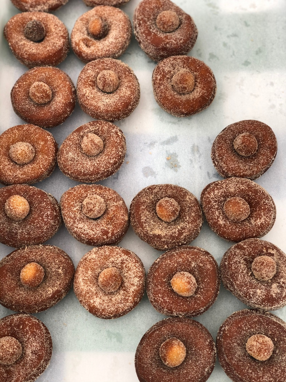 Cider doughnuts at the cider pressing
