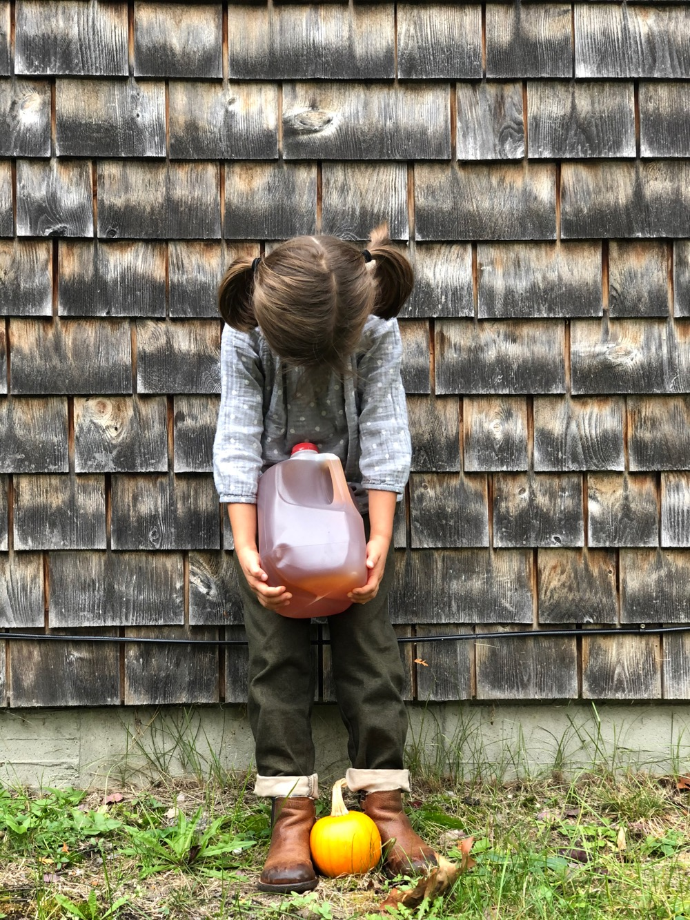 A gallon of fresh cider